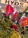 HYDE花